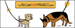 The-yellow-dog